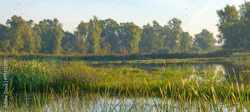 Cadres-photo bureau Inde Shore of a lake under a hazy sky in autumn