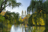 Central Park Fall Landscape Scene in Manhattan, New York City