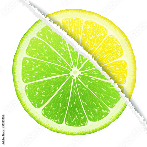 Lemon-lime slices mix in the original version Canvas Print