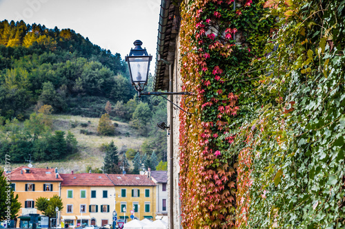 lamp and Ivy in Tuscan mountain