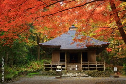 Staande foto Temple 世界遺産 平泉 中尊寺の紅葉