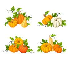 Set Of Vector Orange Pumpkins ...