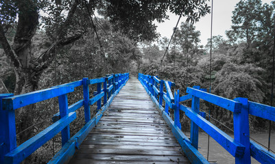 FototapetaBlue wood bridge on a monochromatic background