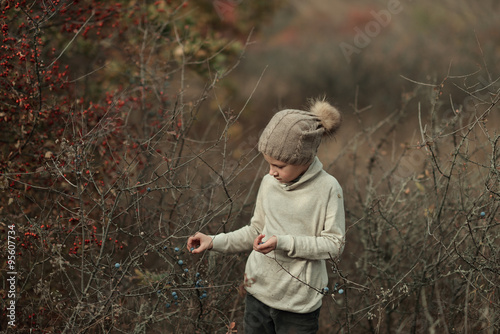 Valokuva  boy in autumn bushes with berries