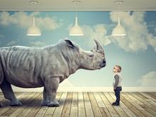 Rhinoceros And Kid