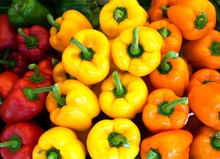 Colorful Sweet Bell Peppers In...