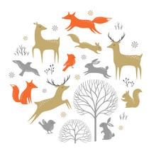 Set Of Winter Woodland Elements For Christmas Design