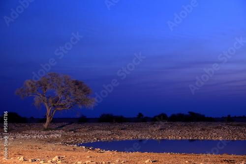 In de dag Beige Wasserloch im Etoscha Park in Namibia