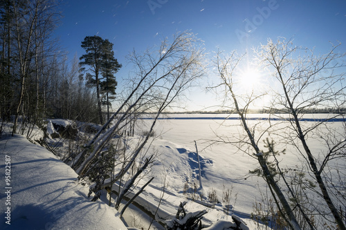 Foto op Plexiglas Arctica Snow covered trees the lake shore on a Sunny day