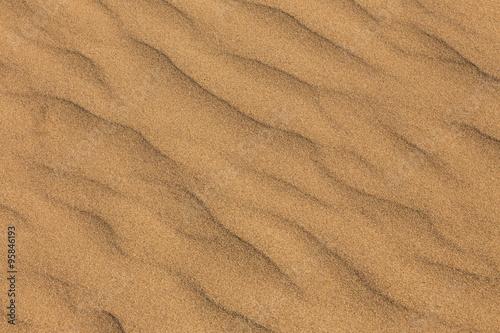 砂丘 Dune
