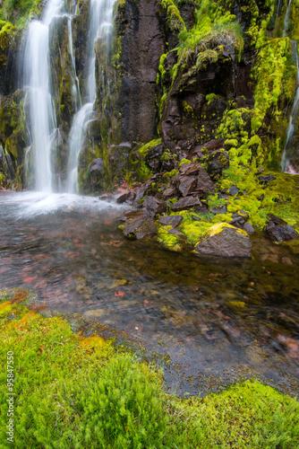 Fotobehang Bossen Small creek, Western Fjords, Iceland