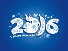 Illustration Of 2016 Year Monk...