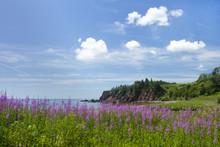 Coastal Beauty Of New Brunswick Province In Canada
