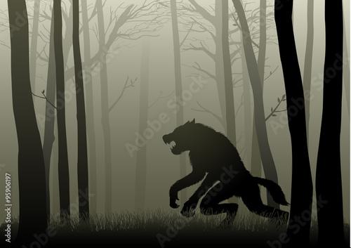 Obraz na plátně Werewolf In The Dark Woods