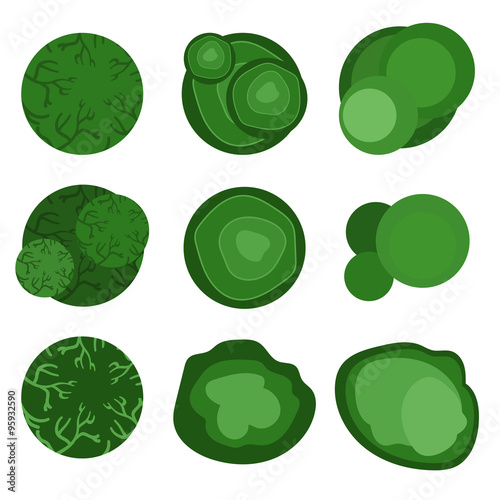 Tuinposter Groene trees top view for landscape design. Vector illustration