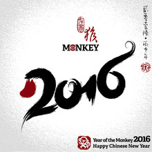 2016: Vector Chinese Year Of T...
