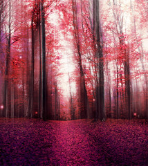 FototapetaRed Magic Misty Forest with Mysterious Lights