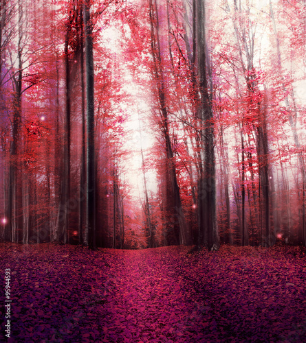 Red Magic Misty Forest with Mysterious Lights