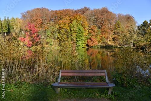 Fotografie, Obraz  Banc à l'ombre devant une nature majestueuse autour de l'étang de la Longue Queu