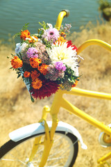 Fototapeta Beautiful yellow bicycle with bouquet of flowers in basket, outdoors