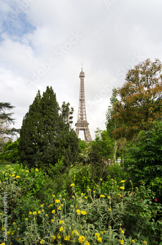 Photo  Eiffel Tower and blossoming trees in Paris