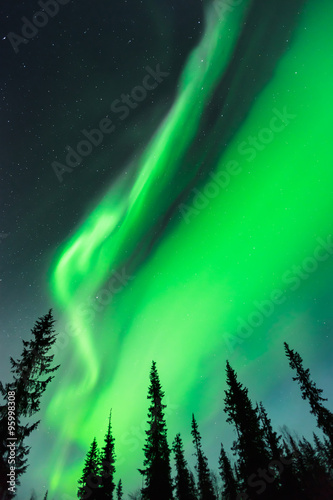 Northern lights (Aurora borealis) in the sky Wallpaper Mural
