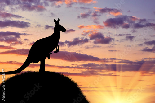 Silhouette of a kangaroo with a baby