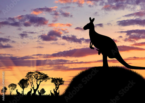 Fotobehang Kangoeroe Silhouette of a kangaroo with a baby