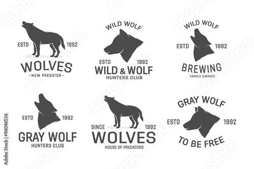 Photographie  Vector set of wolf logo design elements