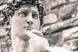 canvas print picture - Michelangelo's David Statue, Italian Art Symbol