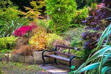Colorful Beautiful English Garden During Fall Season
