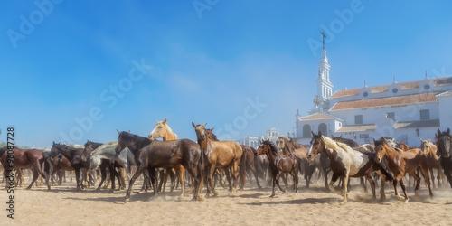 Panorama of horses running before baptism. El Rocio, Spain.