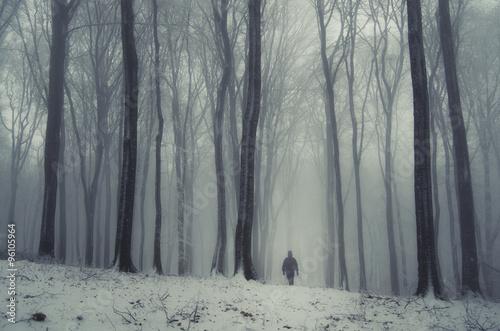 Fototapeten Wald fantasy forest in winter with man