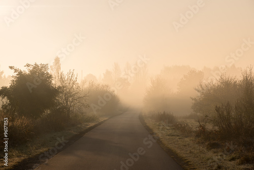 Fototapety, obrazy: Empty road in a misty autumn morning