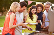 canvas print picture - Mature Friends Enjoying Outdoor Summer Barbeque In Garden