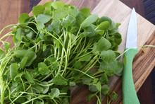 Watercress Salad Ingredient.