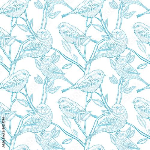 ptaki-na-galeziach-ilustracja-reczna