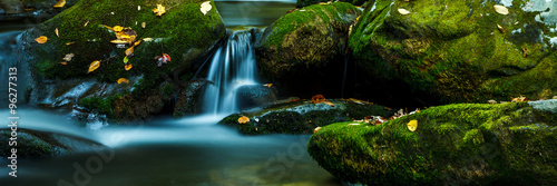 Aluminium Prints Waterfalls Smoky Mountain stream with mossy rocks