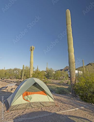 Papiers peints Cactus Campsite in a Desert Park
