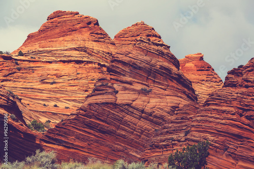 Deurstickers Koraal Coyote Buttes