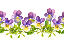Seamless Floral Border Band With Viola Flowers On White Background