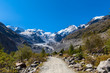 On the hiking path towards Morteratsch glacier