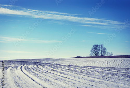 Foto auf Gartenposter Landschappen Landscape with snowed cultivated agricultural field in early winter
