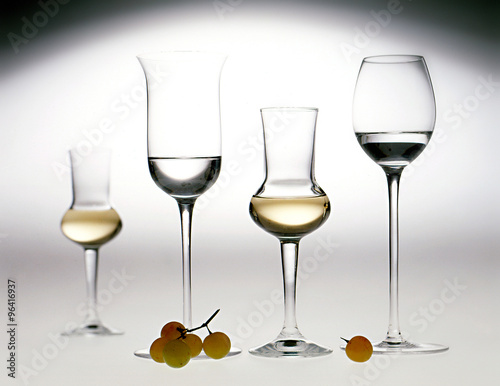 Elegant glasses of grappa Canvas Print