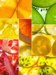 assorted collage of back lit fruit slices