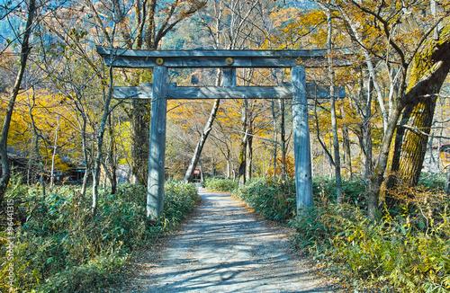 秋の上高地 穂高神社奥宮の鳥居