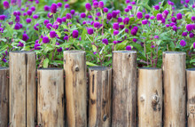 Wooden Fence In Garden