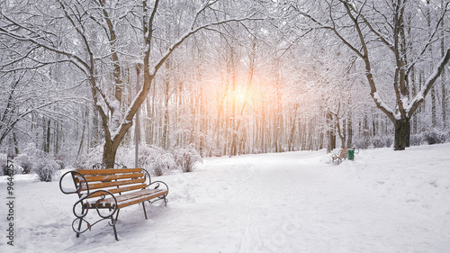 Foto-Leinwand ohne Rahmen - Snow-covered trees and benches in the city park (von pilat666)