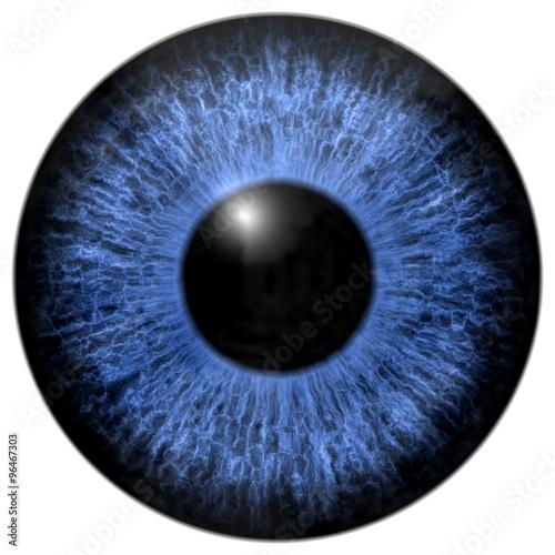 Fotografía  Blue eye iris isolated element on white background