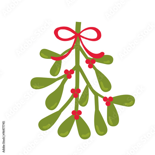Fotografie, Obraz  Christmas Card with Mistletoe design vector illustration